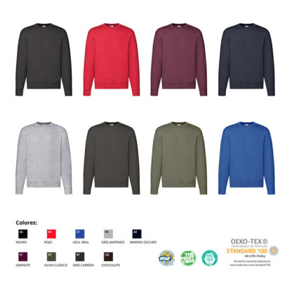 Colores sudadera premium Fruit of The Loom
